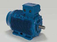 Асинхронный  двигатель на лапах 0,75кВт 3000 об/мин. 220/380В